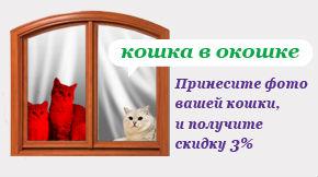 Акция Кошка в окошке